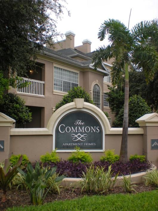 Disney Housing The Commons Edition Disneyology